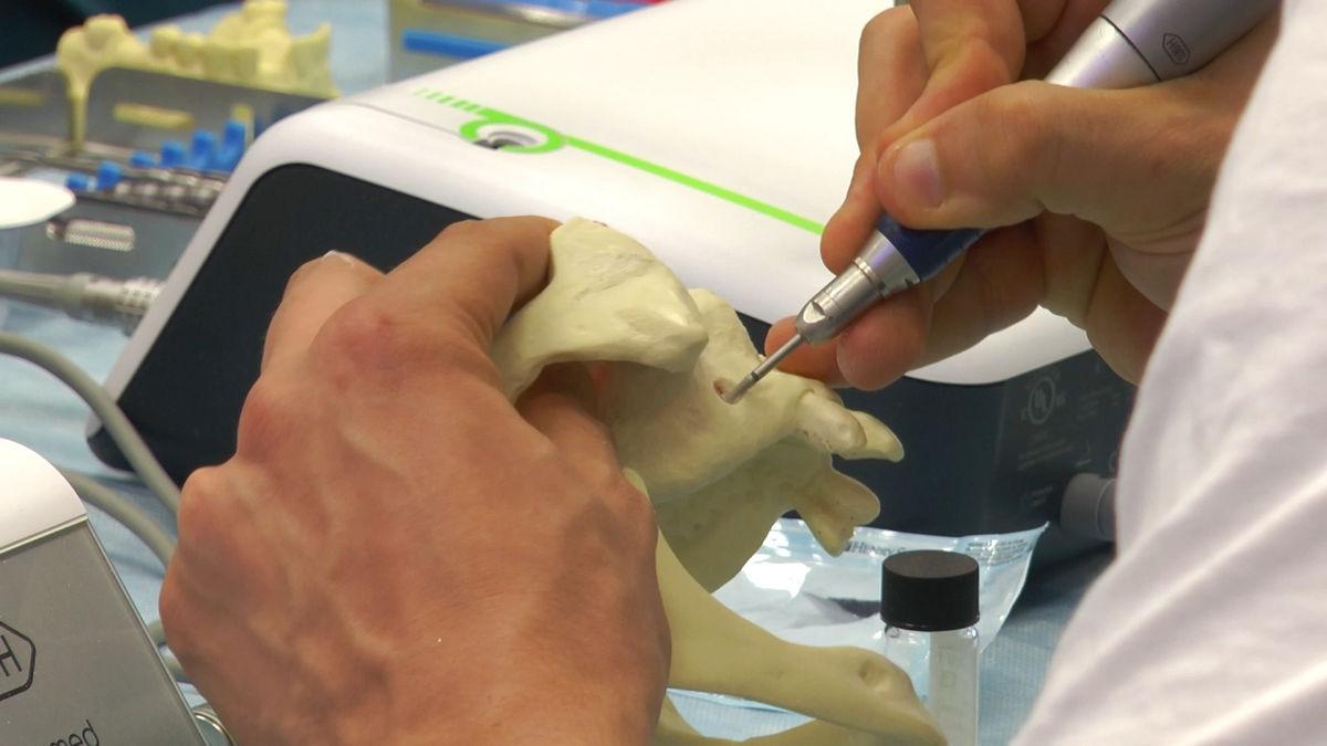 practiculum-implantologii-siv-s3-008