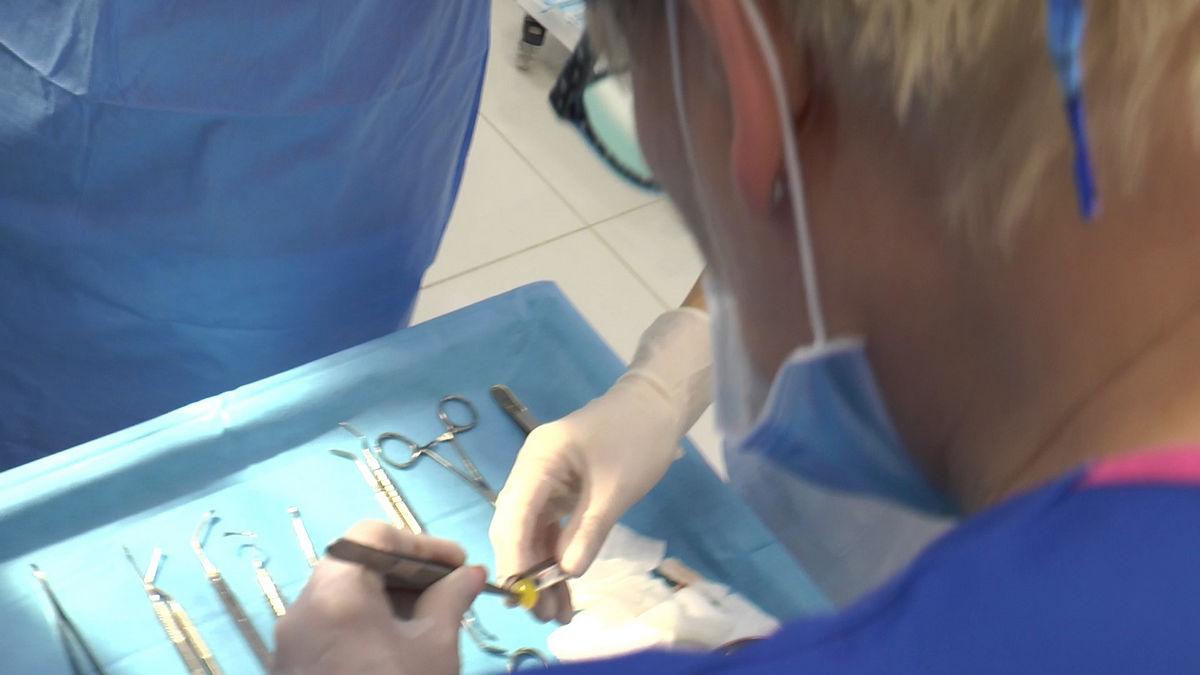 practiculum-implantologii-svb-s8-p3-222
