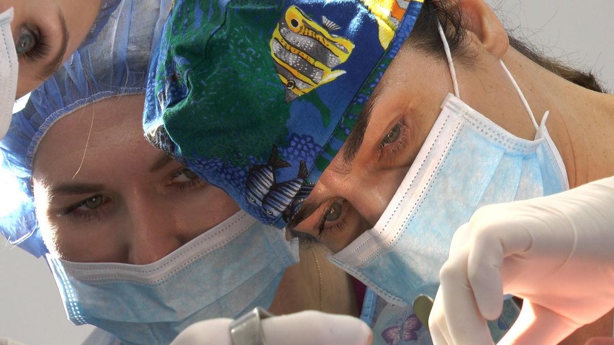 practiculum-implantologii-s-vi-e-7-115
