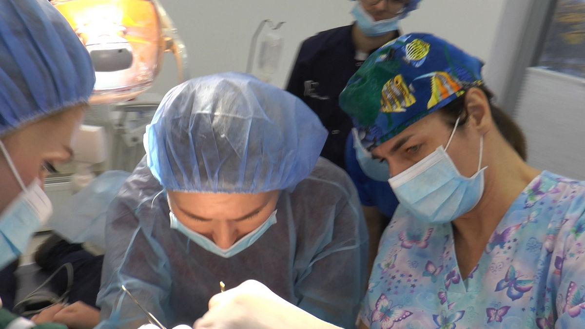 practiculum-implantologii-s-vi-e-7-185