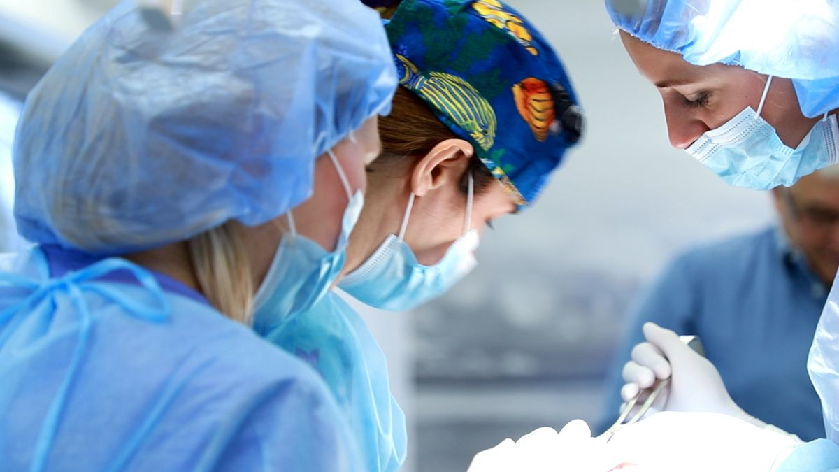 practiculum-implantologii-svi-s10-017